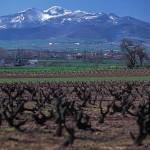 La Sierra de la Demanda en la Rioja