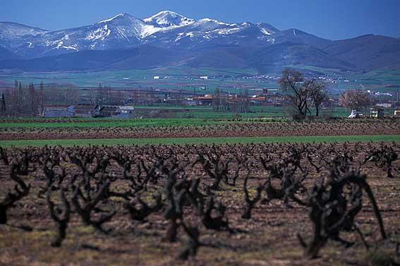 La_Rioja3