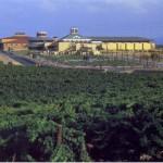 Bodegas Dinastía Vivanco y Museo del Vino