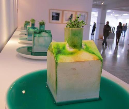 arte joven expo 02