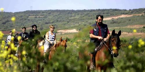 enoturismo q calidad turistica
