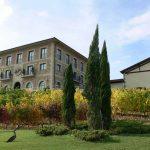 Bodegas de la Rioja: Luis Cañas y La Rioja Alta