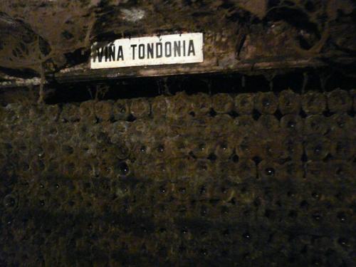 tondonia cementerio