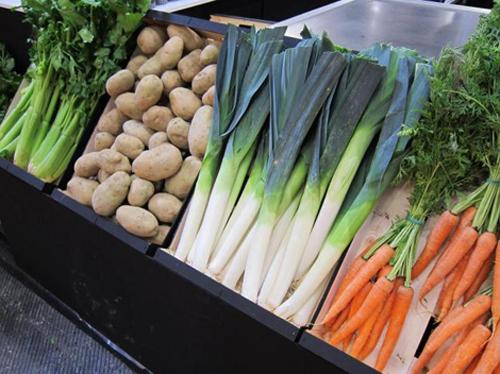 07 04 verdura expo